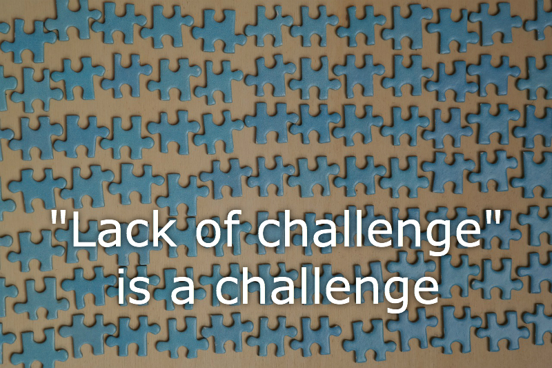 """puzzle pieces with caption """"Lack of challenge"""" is a challenge"""